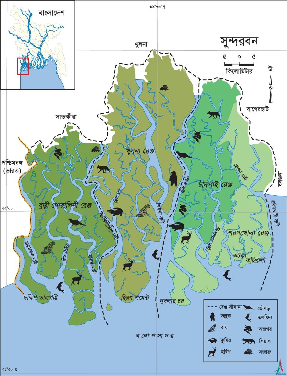SundarbansThe.jpg