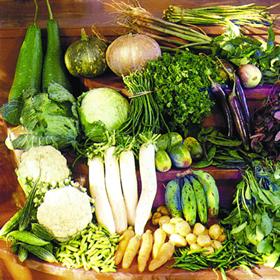 চিত্র:Vegetable.jpg