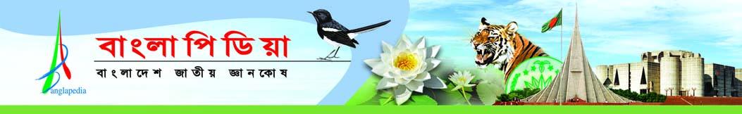 banglapedia_logo_banner_bangla.jpg