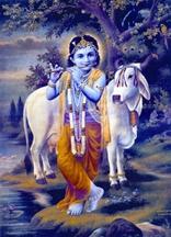 চিত্র:Krishna.jpg